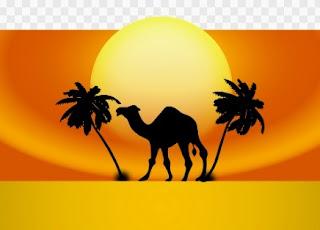 Kisah sahabat nabi, Kisah sahabat nabi yang kaya, Kisah Sahabat Nabi Umar Bin Khattab, kisah sahabat nabi nuaiman