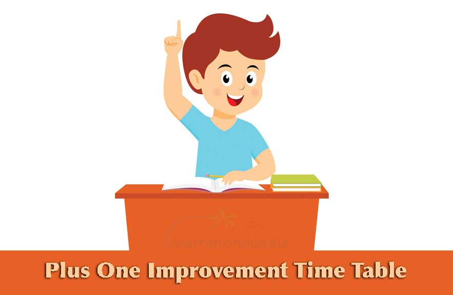plus one improvement timetable 2019