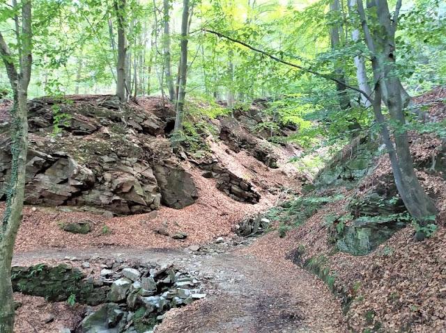 sentiero che da alpe vedabio va a someraro