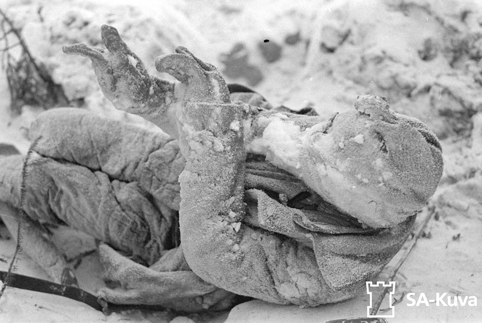 A dead soldier, his body frozen.
