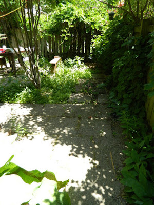 Toronto Leslieville garden cleanup before weeding by Paul Jung Gardening Services