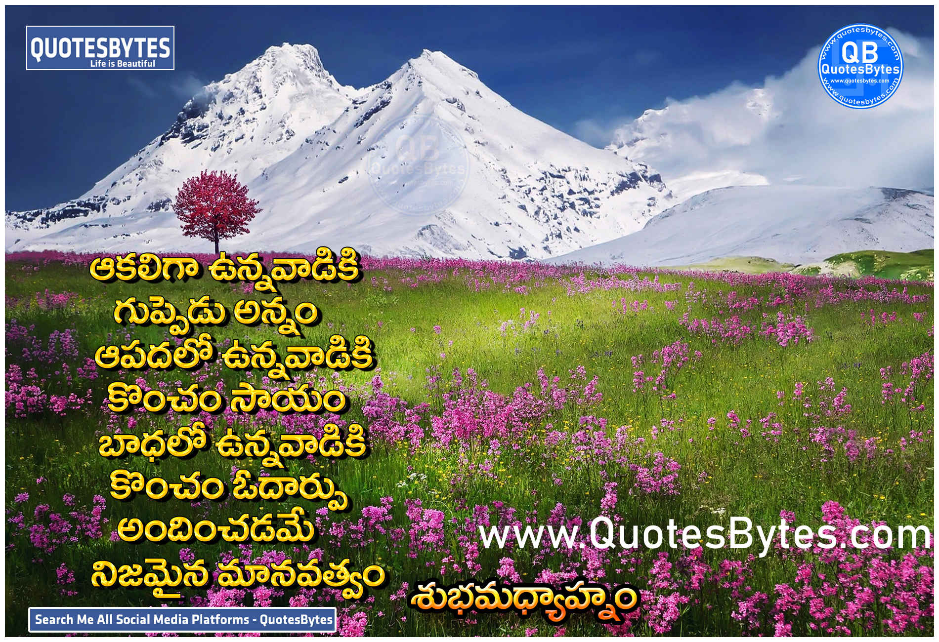 Good afternoon in Telugu,Good  afternoon  Quotes in Telugu,GOOD  AFTERNOON : QUOTES, IMAGES, SMS, WHATSAPP STATUS, WISHES, GREETINGS IN TELUGU,Good  afternoon  Quotes Telugu,Good  afternoon  Quotes in Telugu With Images,Telugu Good  afternoon  Greetings,Telugu Good  afternoon  Quotes,Good  afternoon  Quote In Telugu,Best Good  afternoon  Quotes in Telugu with Images for 2021,Good  afternoon  Quotes Inspirational In Telugu,Telugu Good  afternoon  Inspirational Quotes-Messages On Life In Telugu,Good  afternoon  Telugu Images with Quotes,Heart touching good  afternoon  quotes in telugu,Good  afternoon  Quotes In Telugu,Telugu New good  afternoon  quotes and Wishes 2021,Good  afternoon  Wishes in Telugu,Beautiful Good  afternoon  quotes in telugu ,Good  afternoon  Quotes With Images ,Good  afternoon  Quotes, Wishes In Telugu [ Latest 2021 ],Telugu Inspirational Good  afternoon  Quotes,Good  afternoon  Telugu Quotes,Telugu Good  afternoon  Quotes images,Telugu inspirational Quotes images, Telugu Good  afternoon  quotes in telugu,Good  afternoon  Inspirational Quotes Telugu,good  afternoon  kavithalu images in telugu,Best Good  afternoon  Quotes Telugu Images,latest quotes about good  afternoon  quotes,Best Good  afternoon  Quotes and Wishes,latest quotes in telugu,Best Good  afternoon  Quotes In Telugu - Day Wishs,latest quotes for inspirational quotes in telugu,Good  afternoon  Quotes Status SMS,top telugu good  afternoon  quotes in telugu,Good  afternoon  Quotes Inspirational In Telugu,latest kavithalu image in telugu,Fresh Good  afternoon  Messages In Telugu,Good Morning  In Telugu,good afternoon in telugu,good evening in telugu,good night in telugu .