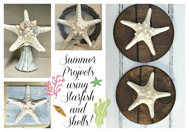 Summer projects using shells and starfish