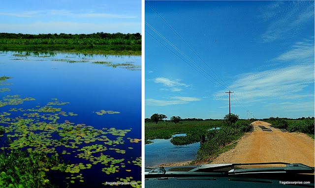 Paisagem à beira da Rodovia Transpantaneira, Pantanal do Mato Grosso