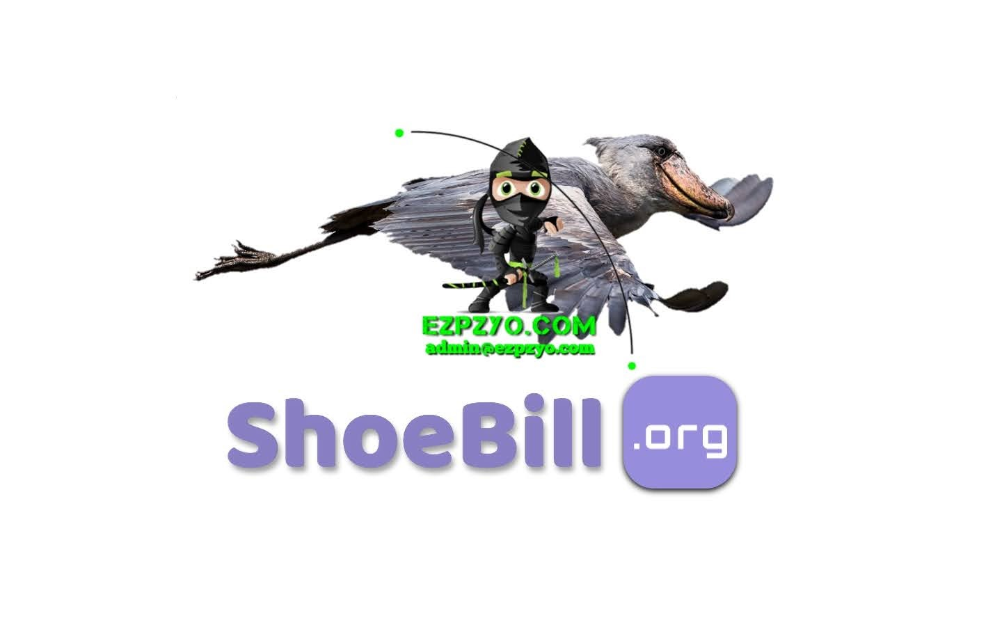 shoebill.org