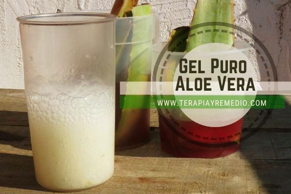 Gel Puro de Aloe Vera Casero de la mejor calidad y apto para incluirlo en nuestros Remedios Caseros