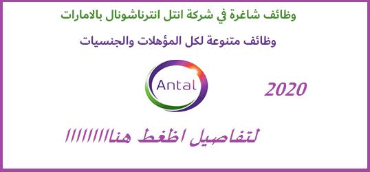 ظائف شركة انتل انترناشيونال في الامارات لمختلف التخصصات
