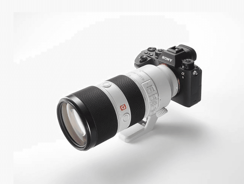 Sony a9 with the Sony SEL100400GM lens