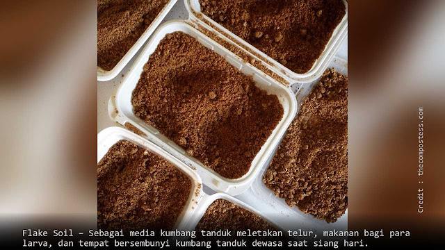 Flake Soil sebagai media larva kumbang tanduk hidup dan makan.