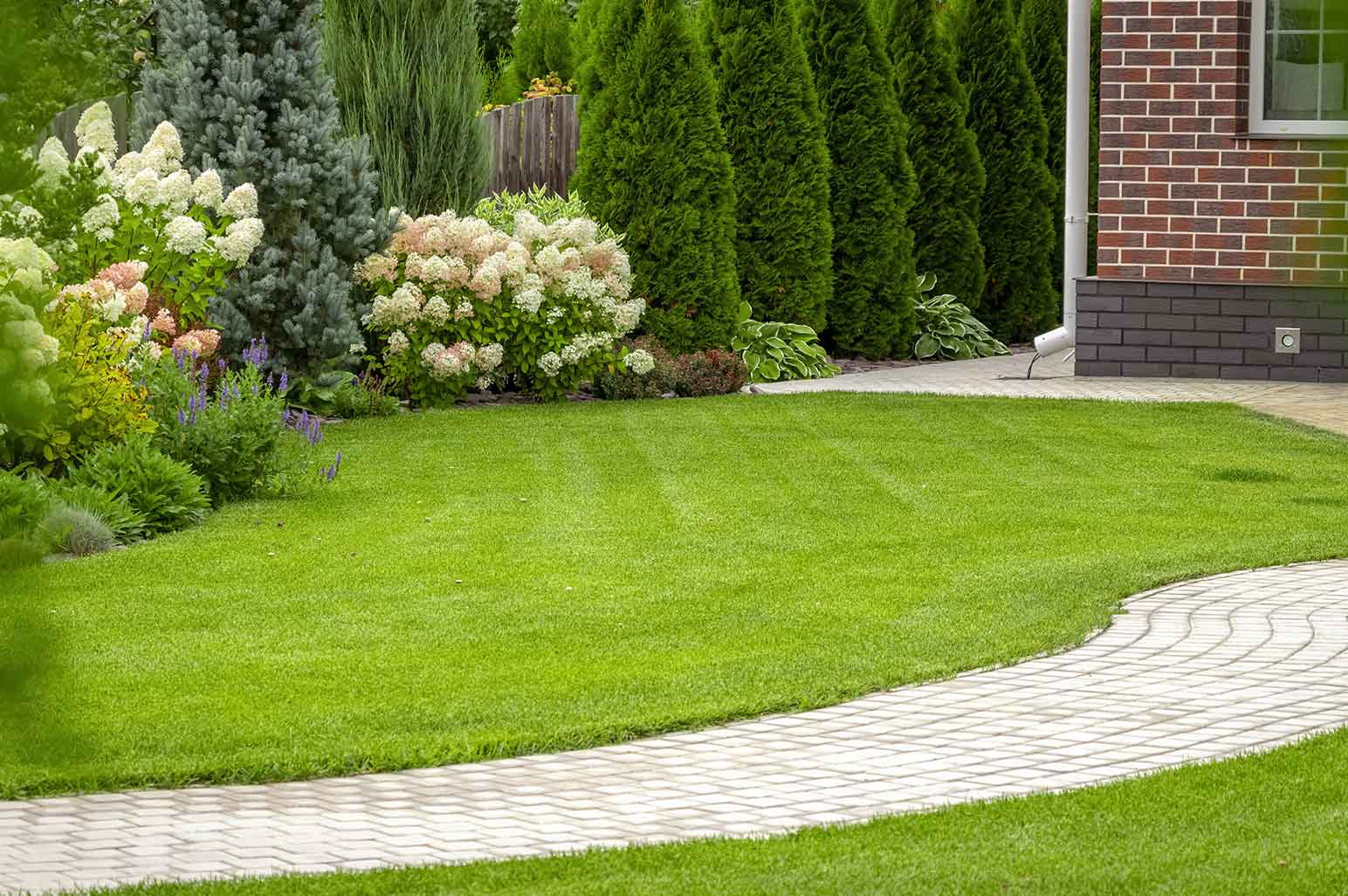 Tips to Keep Your Lawn Looking Good