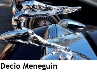Galeria 2020: Meneguin