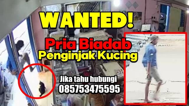 Injak Kucing Hamil Sampai Mati, Pria Asal Kalimantan Ini Diburu, Ada Yang Kenal?
