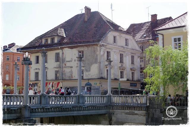 Gartenblog Topfgartenwelt Slowenien: Laibach