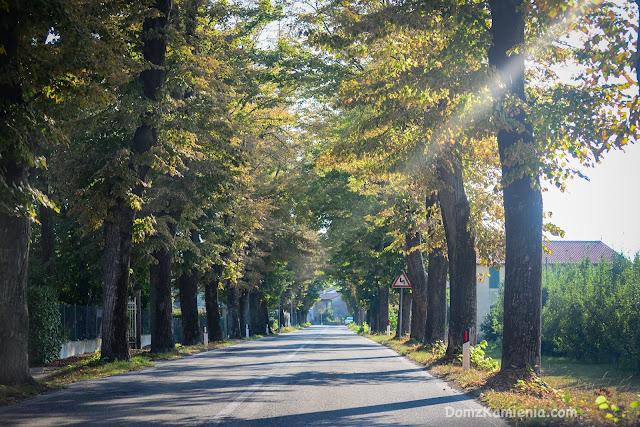 Wrzesień w Emilii- Romanii