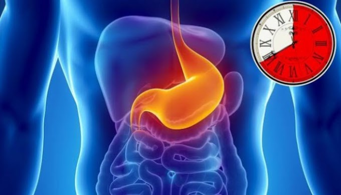 Healthy Habits Of Digestion Of Food