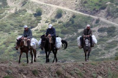 Πόλεμος για τα φαρμακευτικά φυτά στην ελληνοαλαβανική μεθόριο