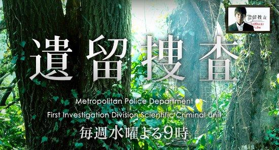 Sinopsis Iryu Sosa / 遺留捜査 (2011) - Serial TV Jepang
