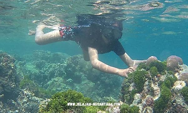 konsumsi wisata pulau pramuka