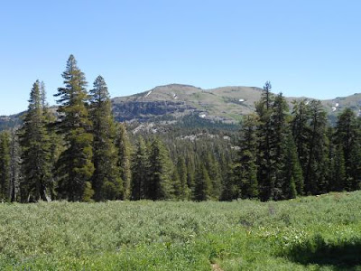 PCT, mountains, trees, high desert, alpine