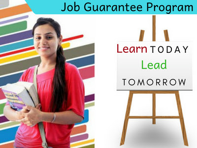 Job Guarantee Program