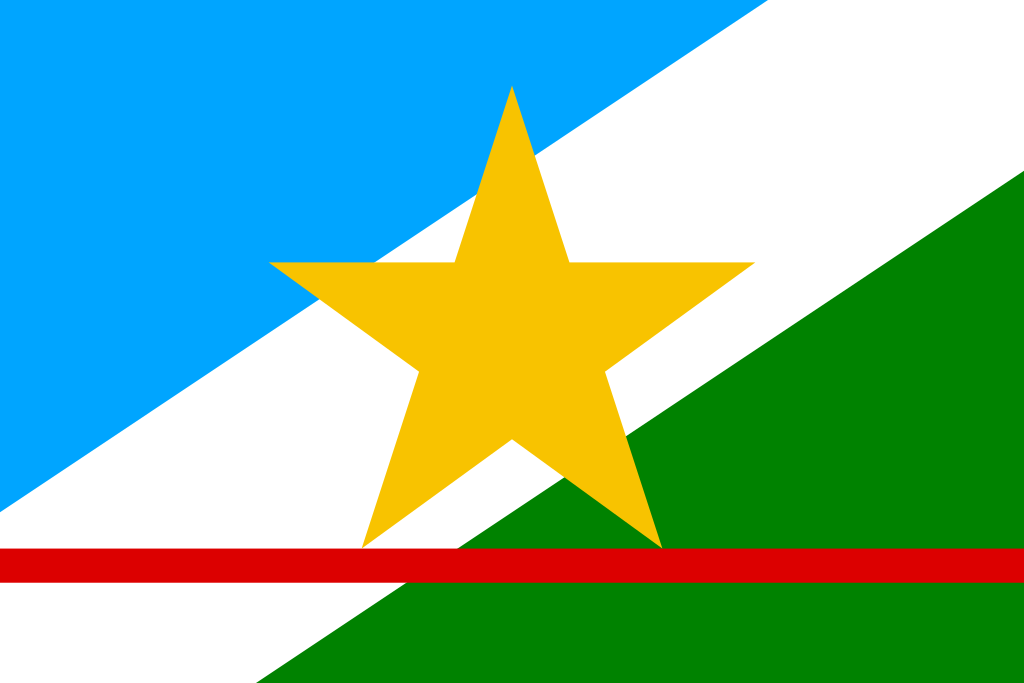 Bandeira do estado de Roraima