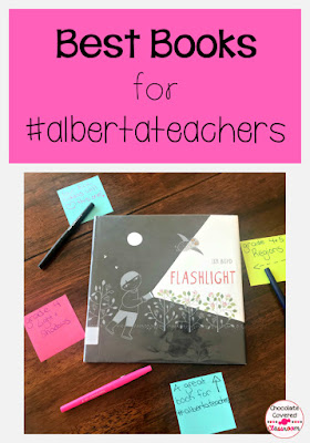 best books for alberta teachers - flashlight wordless picture book