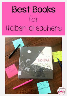 best books for alberta teachers - flashlight wordless picture book