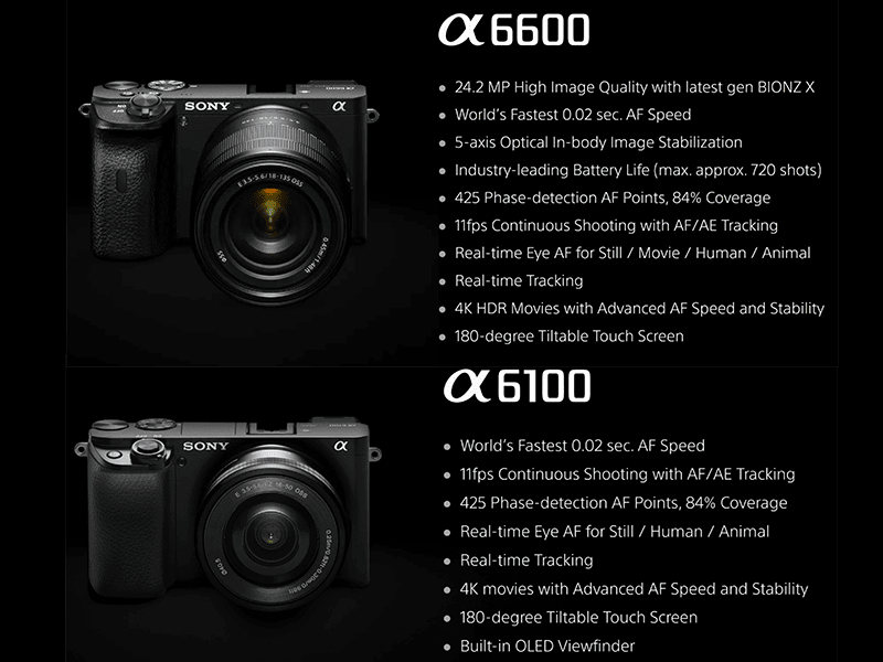 Sony a6100, a6600 APS-C mirrorless cameras now official!