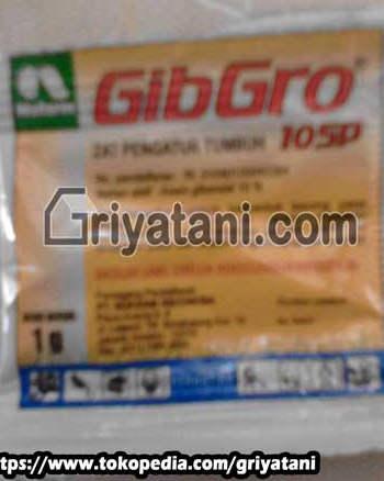GibGro 10SP