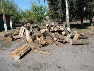Мирополье. Заготовка дров. Отопление в селе – печное