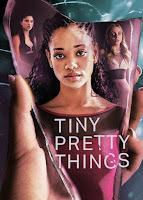 Tiny Pretty Things Season 1 Dual Audio Hindi 720p HDRip