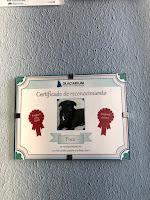 placa de empleado del mes