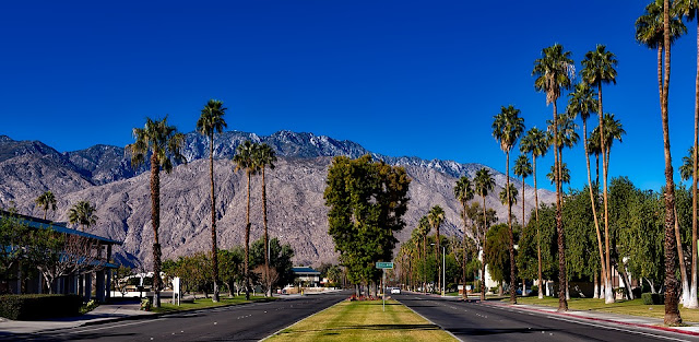 5 Reasons You Need to Visit Palm Springs This Fall/Winter