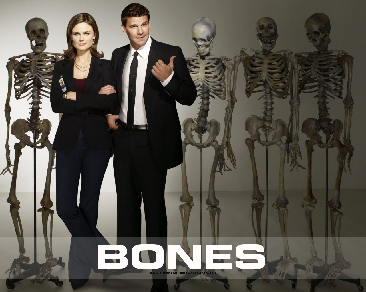 Assistir Online Bones 7ª temporada