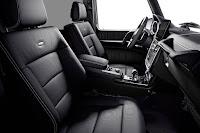 Mercedes-Benz G 500 Limited Edition (2017) Interior