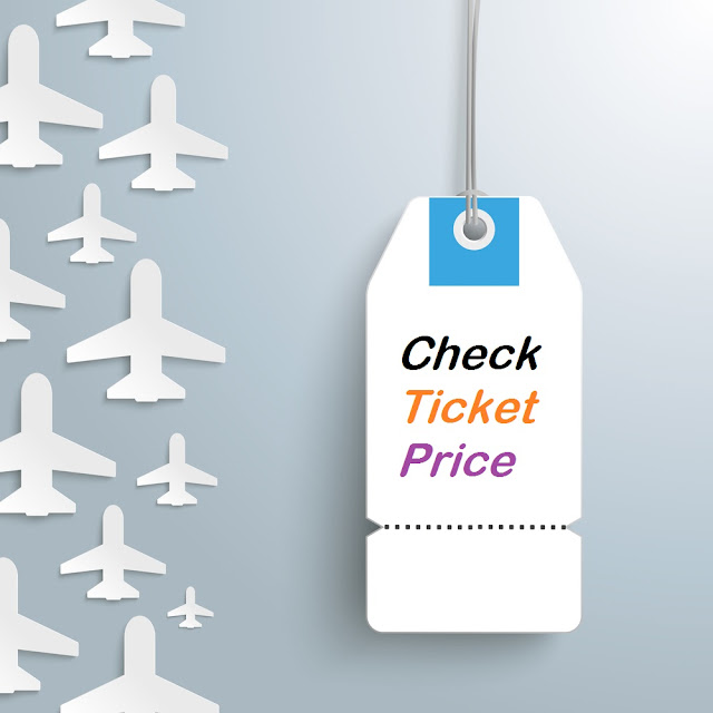 price of domestic flights