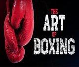 art-of-boxing
