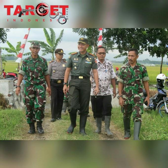 Kodim 0718 Pati Bersama Petani Siap Mendukung Swasembada Beras 2018