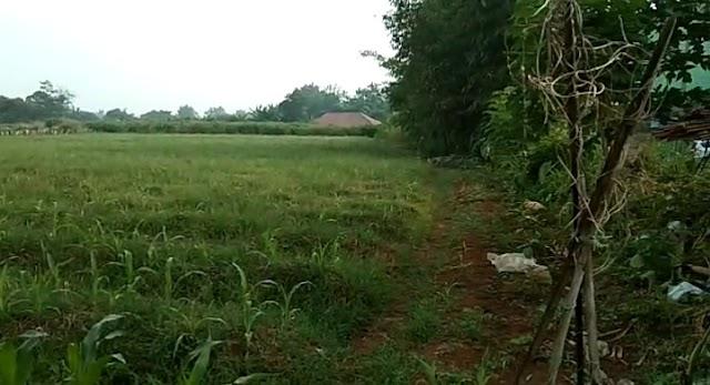 Dijual Tanah Untuk Perumahan atau Perkebunan di Daerah Bogor