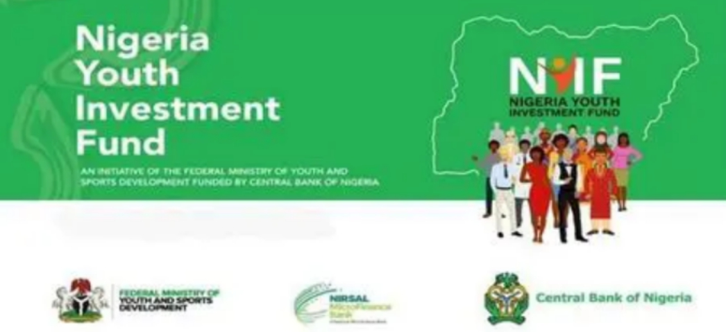NYIF: Upgrade NYIF Portal for Completion of our Application, Nigerian Youths Beg FG