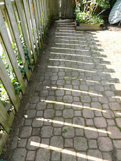 Palmerston Little Italy Toronto Back Yard Garden Clean up after by Paul Jung Gardening Services