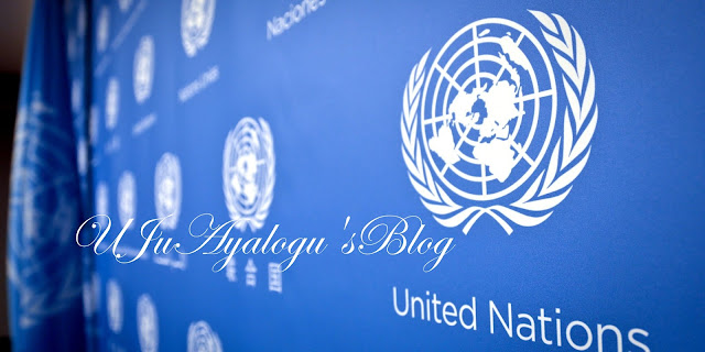 Nigeria accounts for 80% capital flight in West Africa — UN report