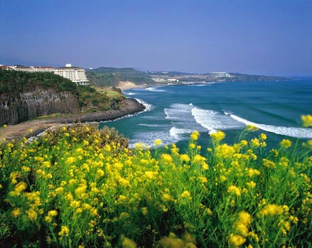 Jeju Island Winter Tour