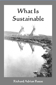 What Is Sustainable