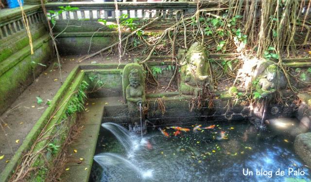 Fuente con peces en el Monkey Forest Ubud