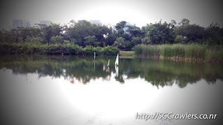 [PHOTOS] 20160326 RC Boating at Sengkang Pond 813e1b5b-5fa2-4782-8a18-d0d4cf7ceb52