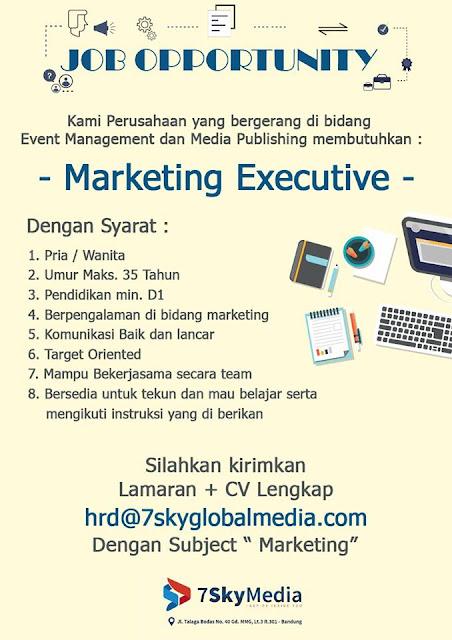 Lowongan Kerja Marketing Executive 7SkyMedia