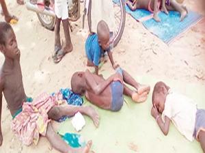 cholera kill 13 yobe drinking water borehole refuse dump
