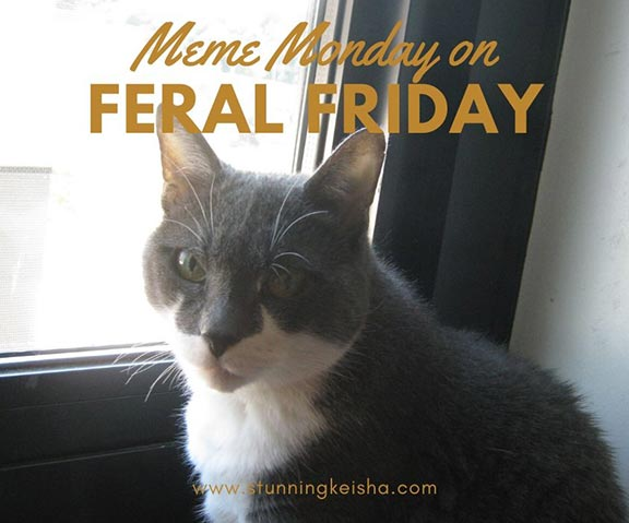 Meme Monday on Feral Friday