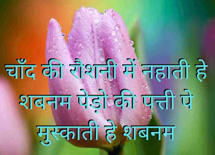 shabnam-nature-shayari-in-hindi